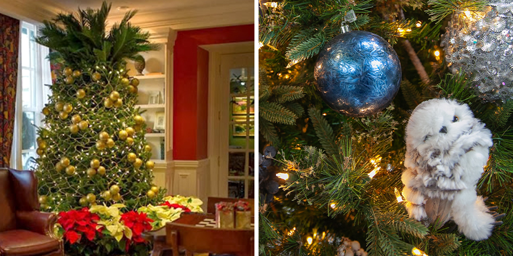 2020 Christmas Tree Trends Salisbury Greenhouse