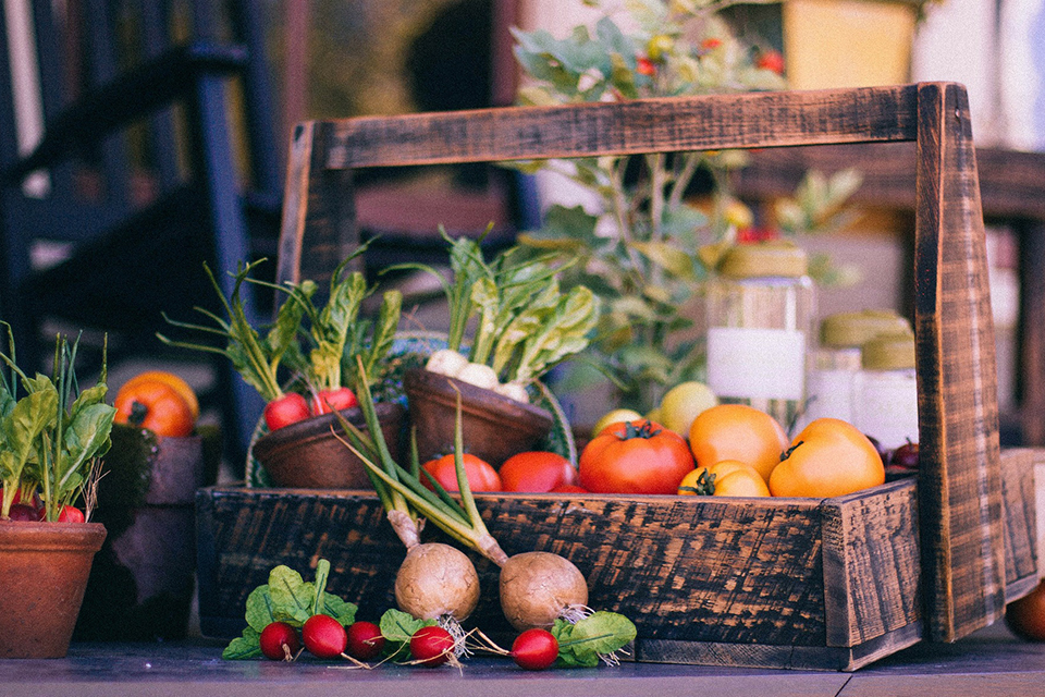 Growing a Mixed Fruit and Vegetable Garden - Salisbury ...