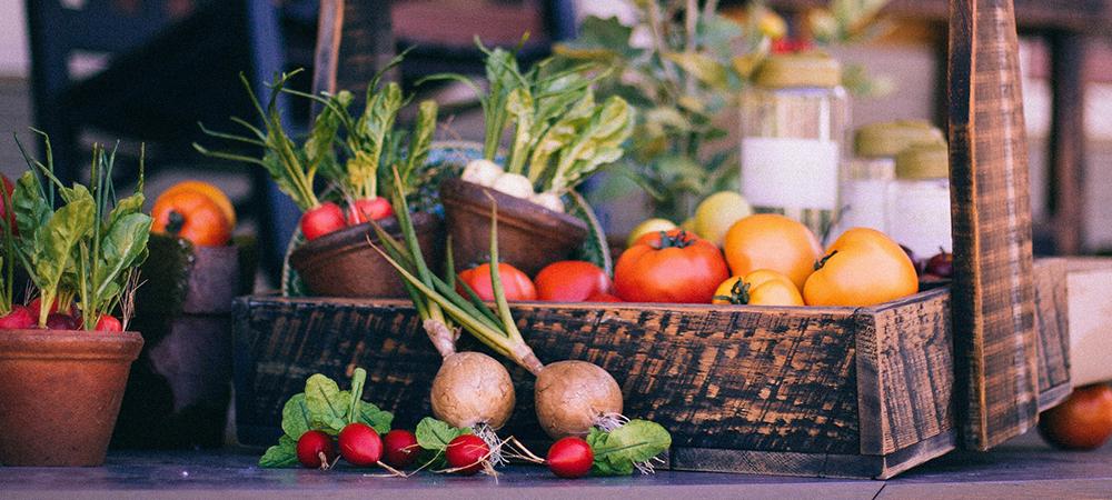 Growing A Mixed Fruit And Vegetable Garden Salisbury Greenhouse