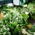 Best Herbs for the Turkey