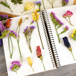 How To Create A Personalized Plant Journal