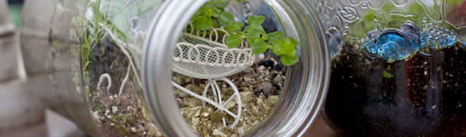 Making Mason Jar Terrariums Salisbury Greenhouse